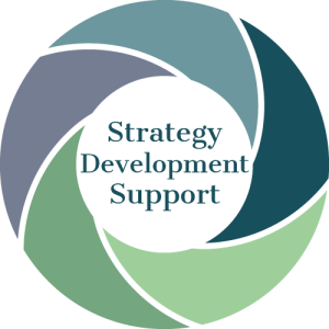 strategy development and support figure